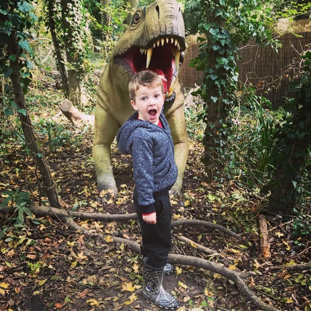 Pickle had great fun last Saturday exploring the Dinosaur Foresthellip