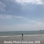 Weekly Photos Early June 2018