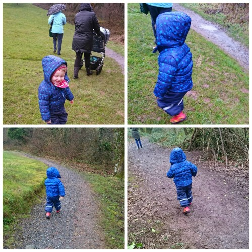 nature trail collage 2