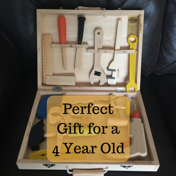 Perfect Gift for a 4 Year Old
