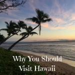 Why You Should Visit Hawaii