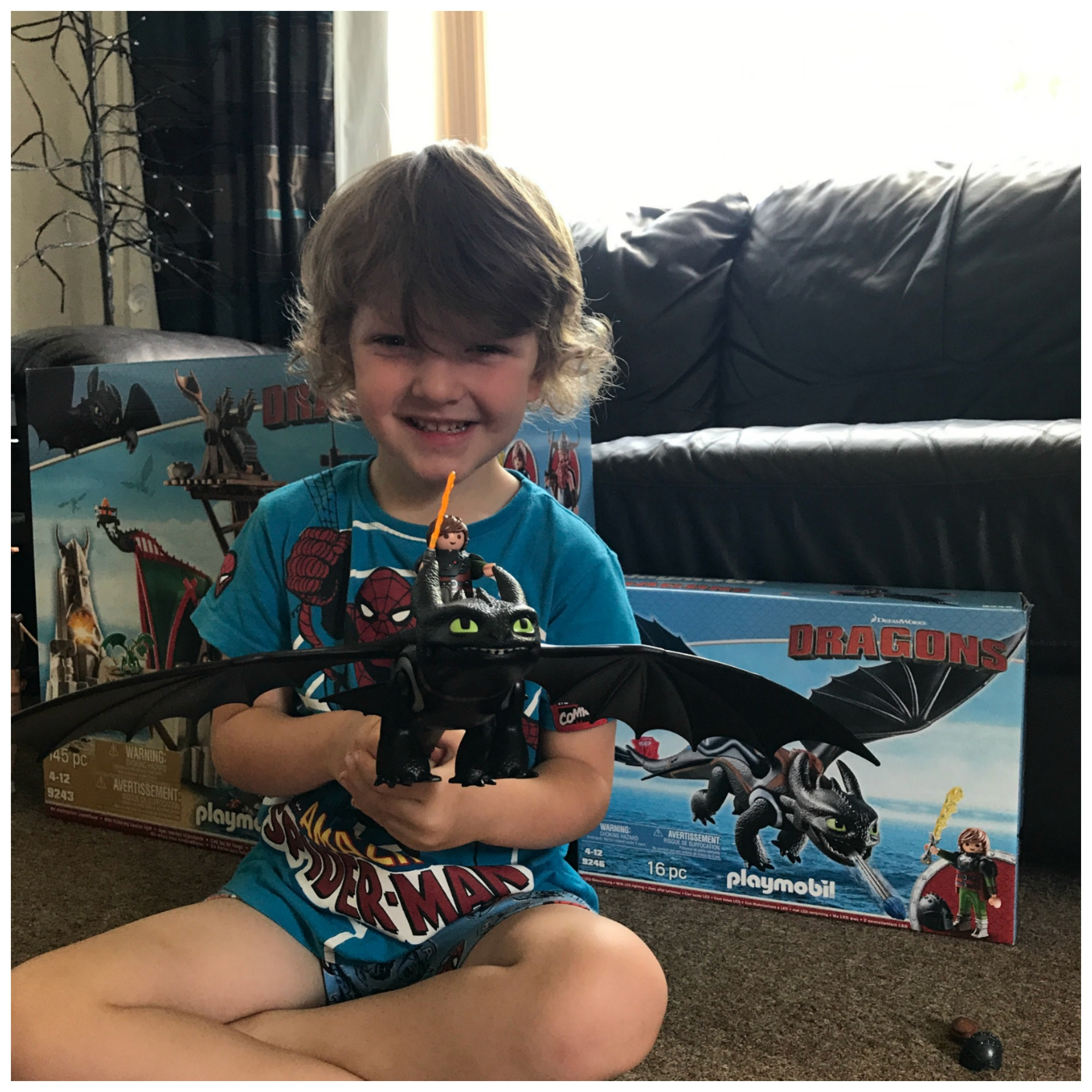 playmobile dragons sets