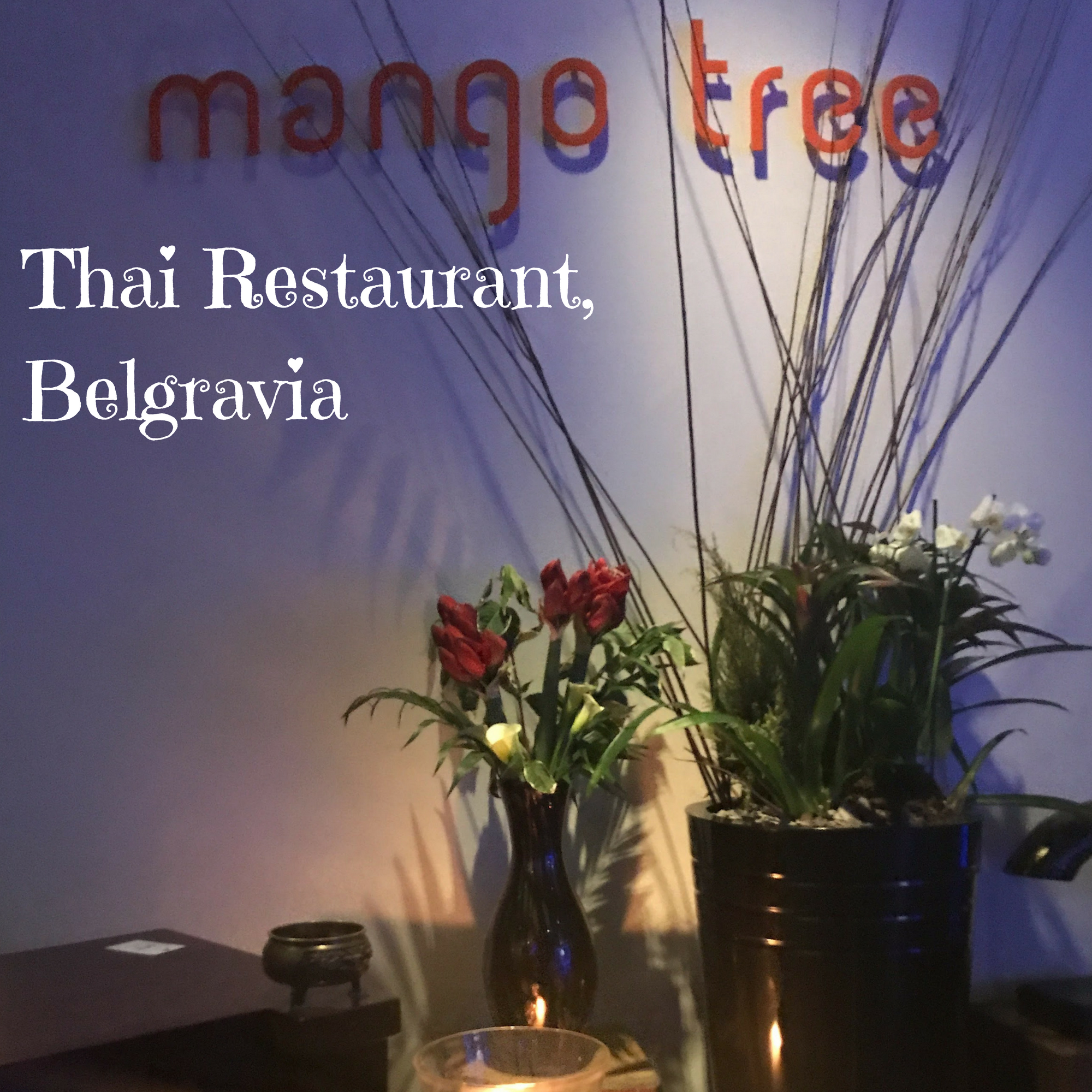 The Mango Tree Thai Restaurant, Belgravia