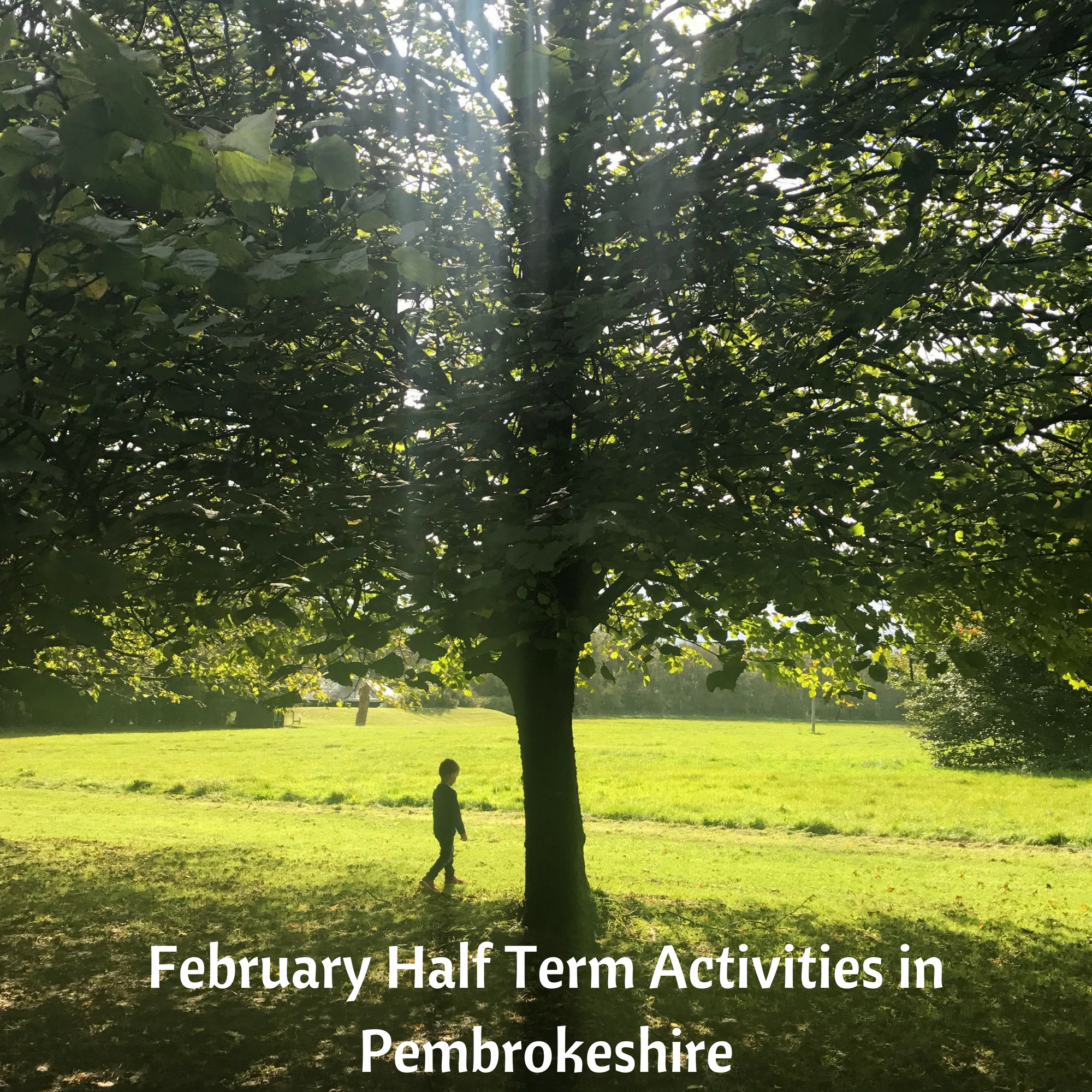 February Half Term Activities in Pembrokeshire
