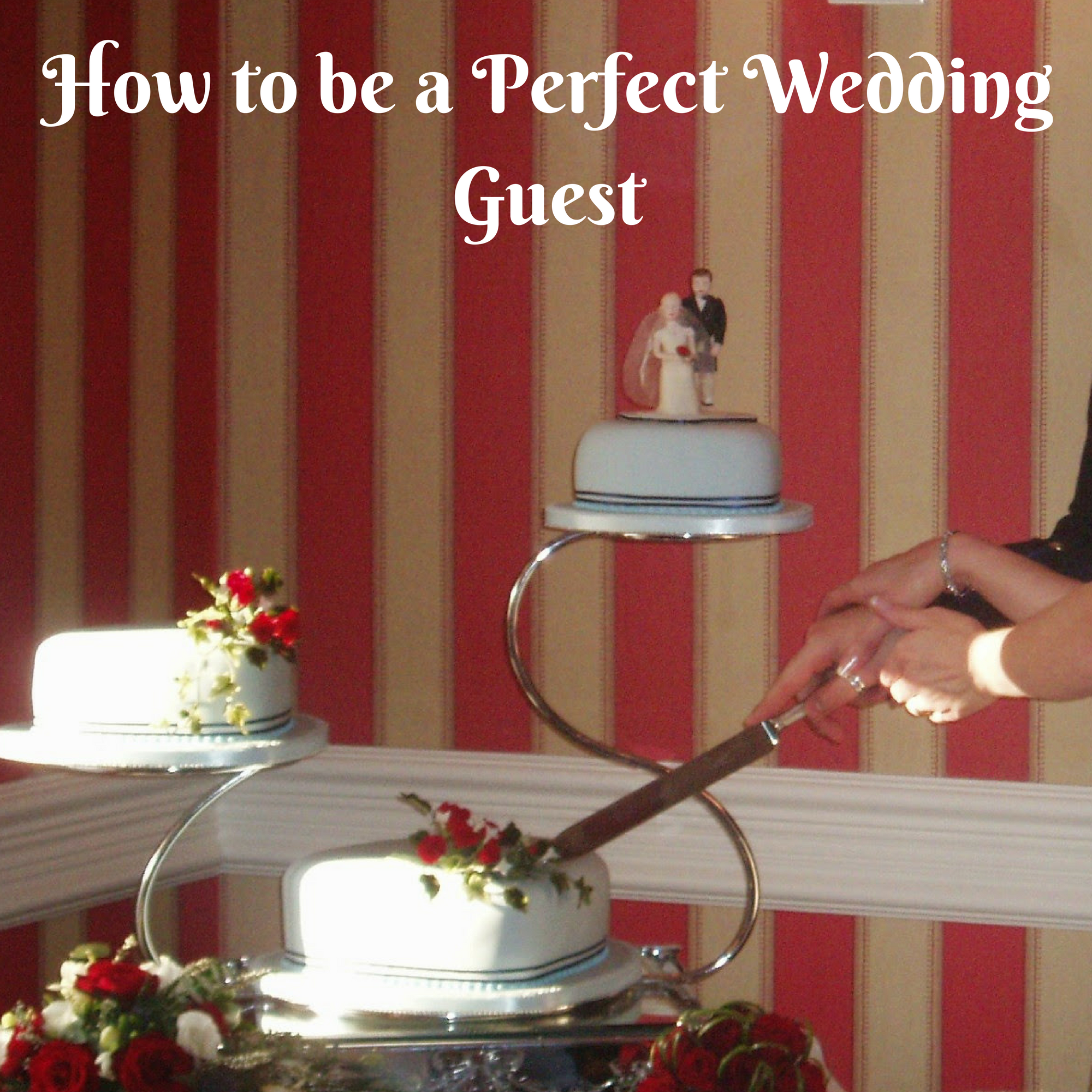 How to be a Perfect Wedding Guest