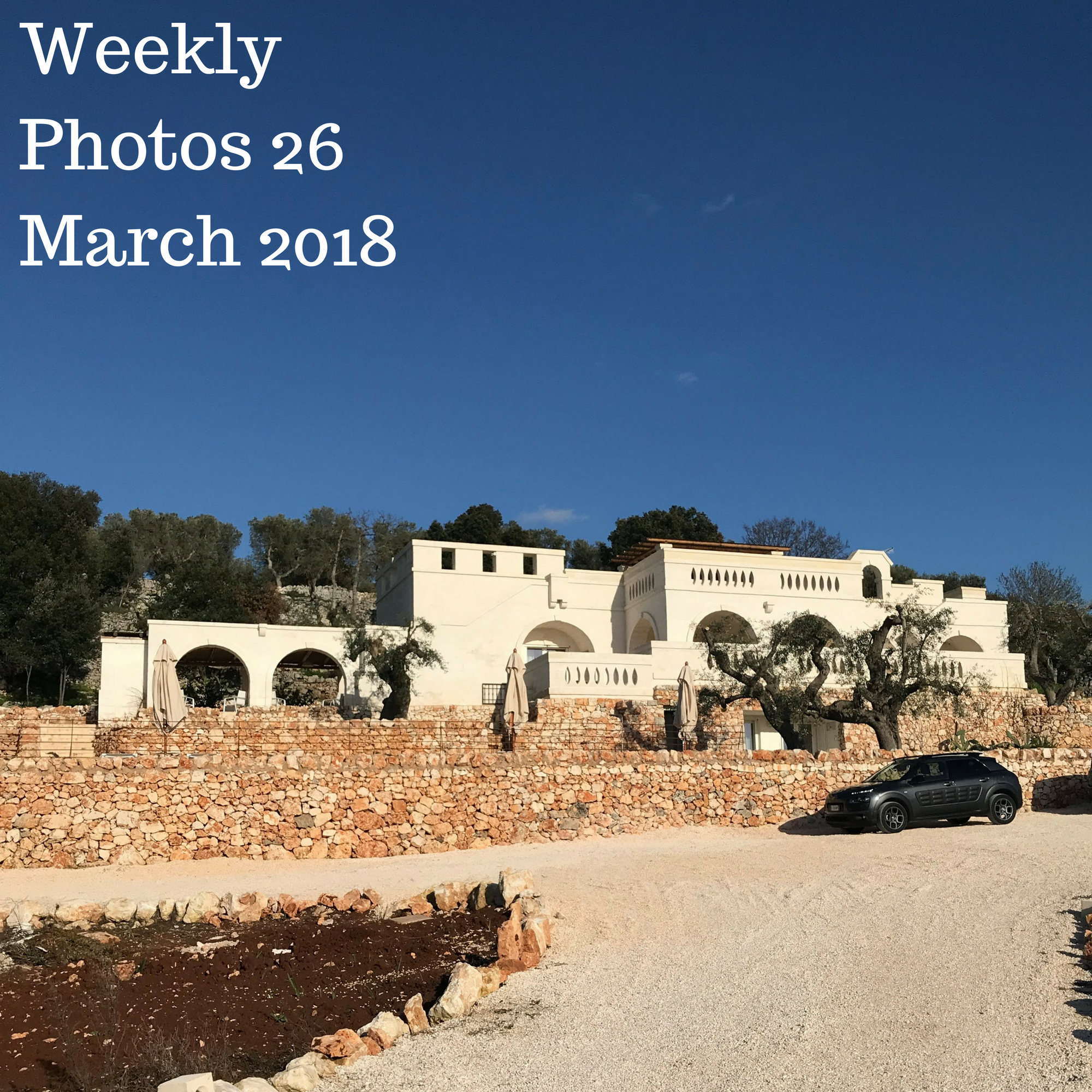 Weekly Photos 26 March 2018
