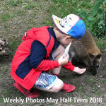 Weekly Photos May Half Term 2018