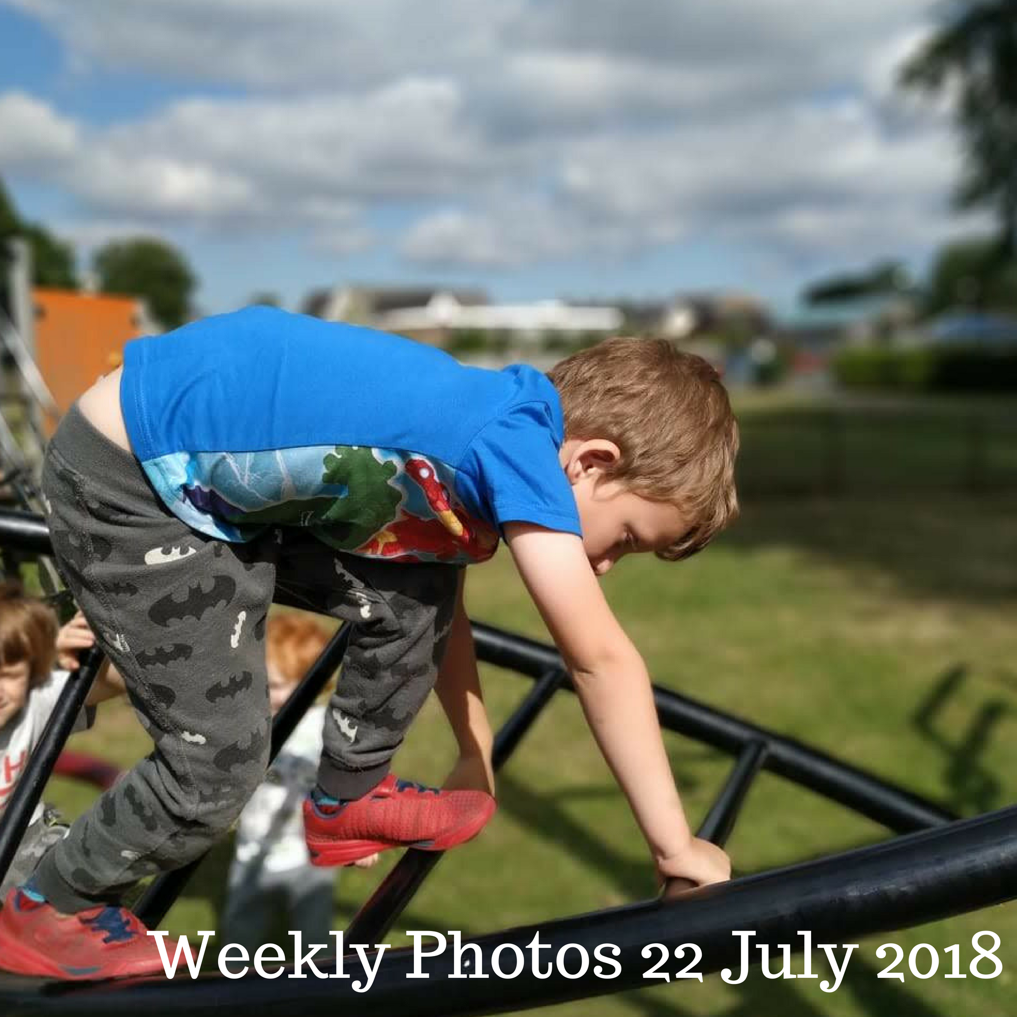 Weekly Photos 22 July 2018