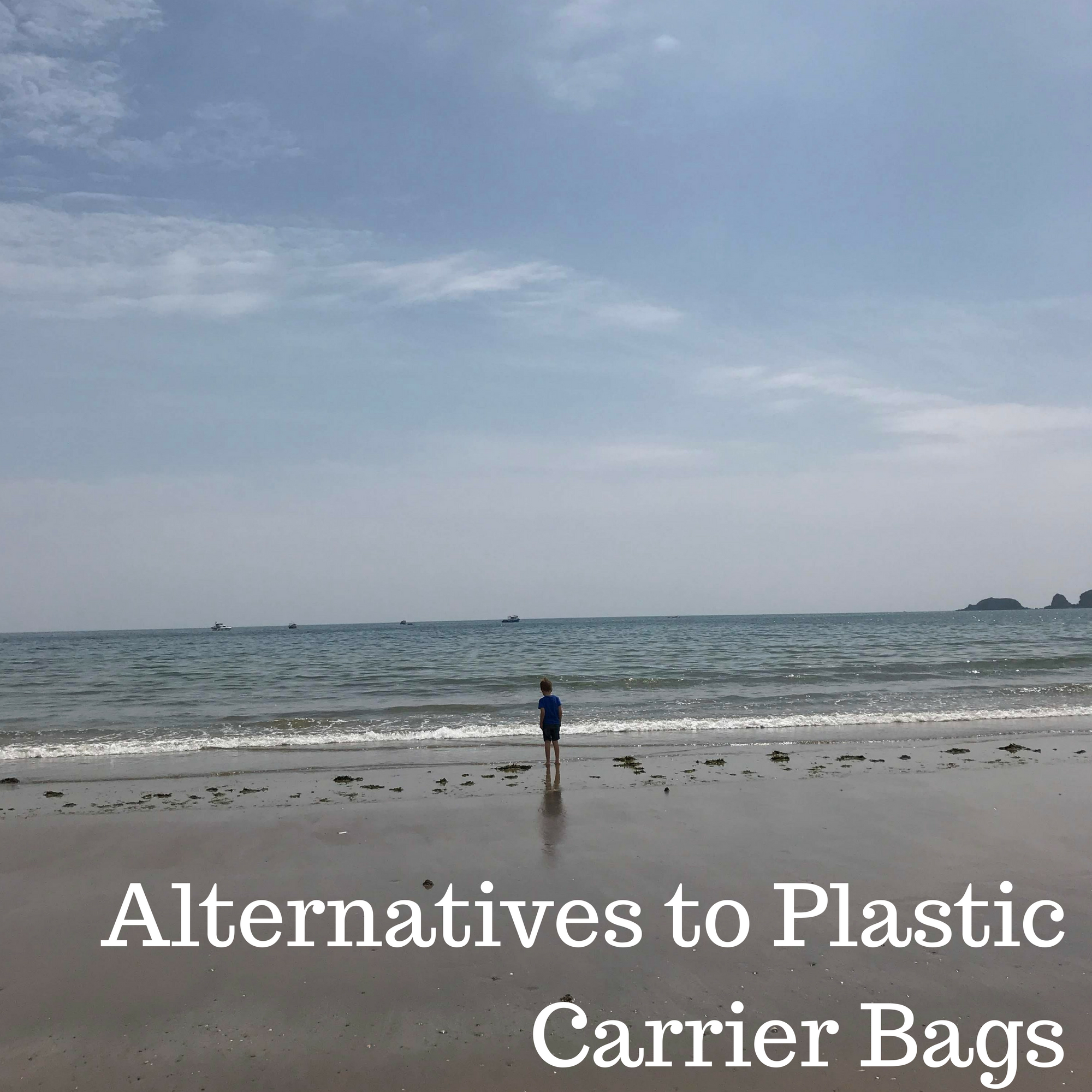Alternatives to Plastic Carrier Bags