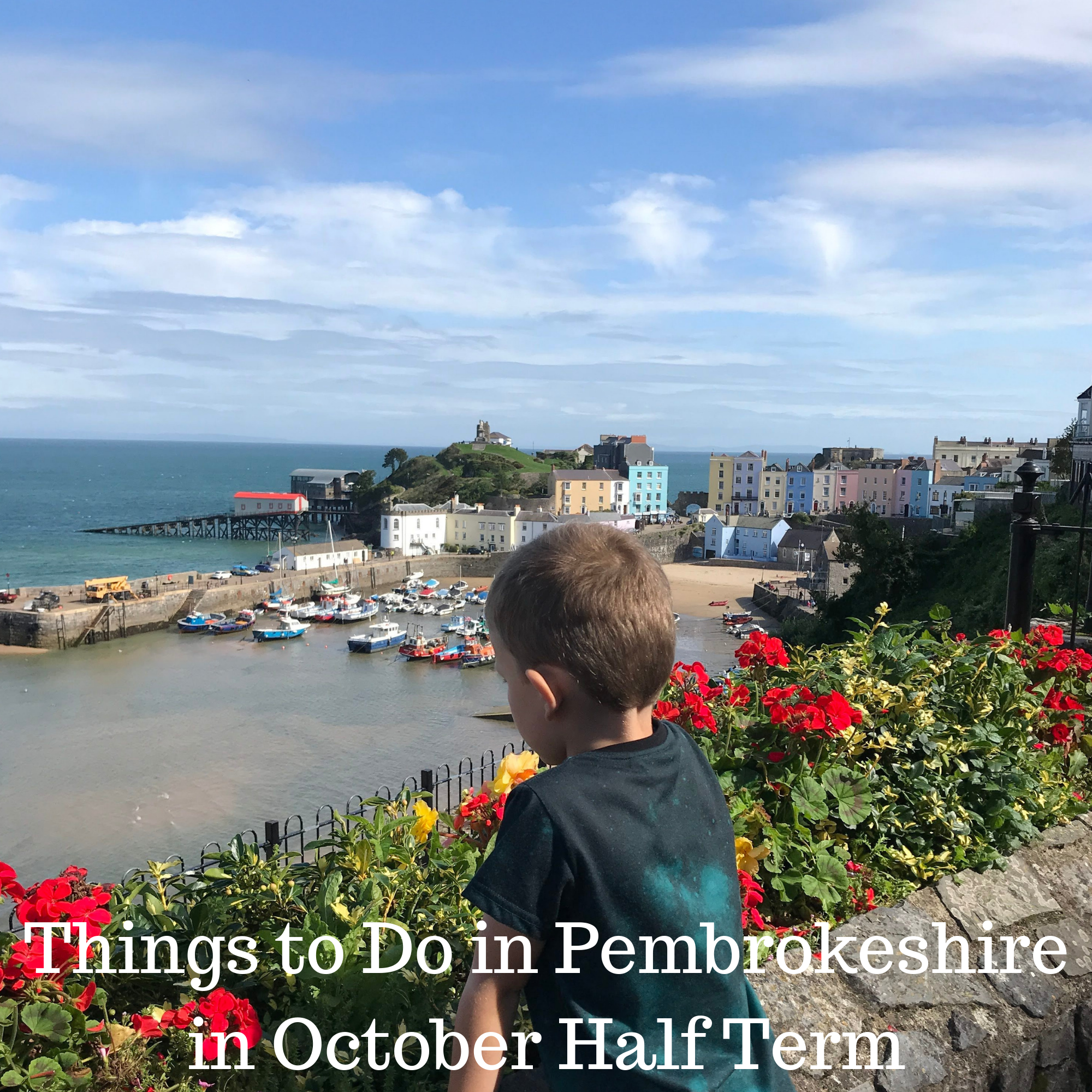 Things to Do in Pembrokeshire in October Half Term