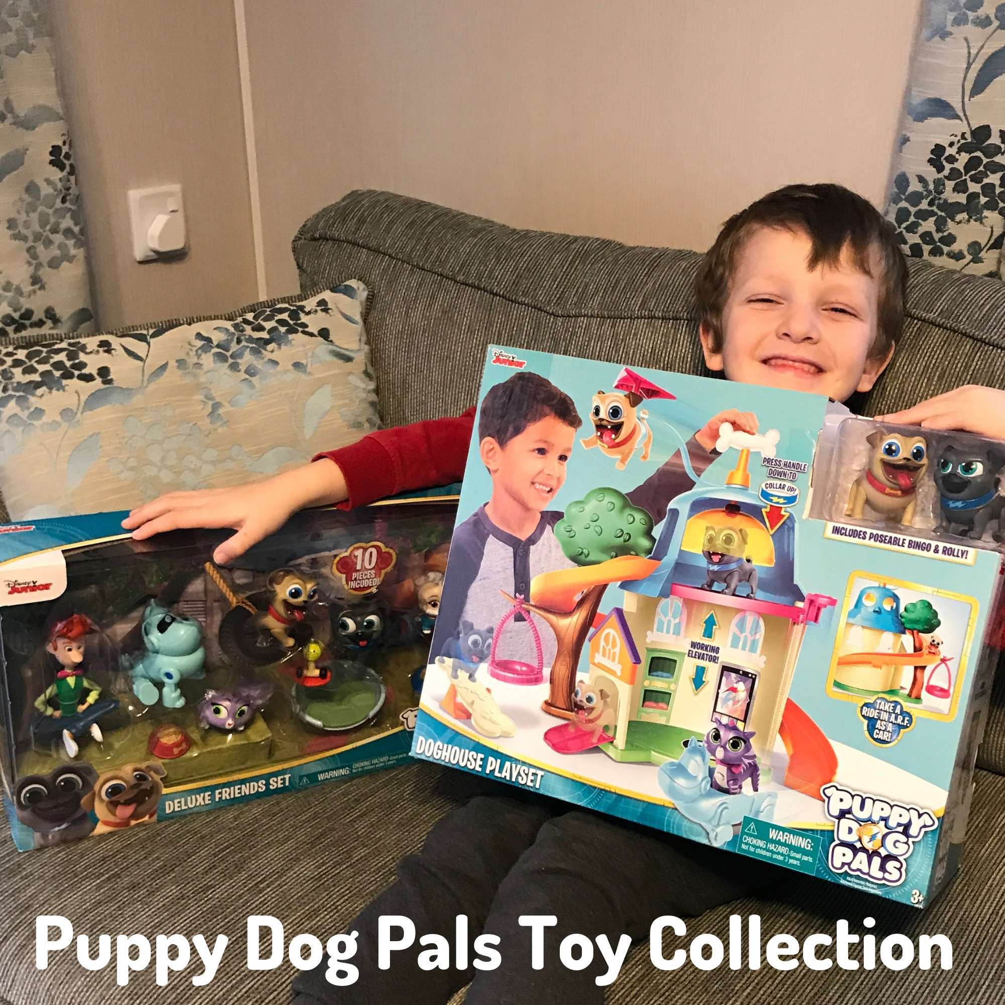 Puppy Dog Pals Toy Collection