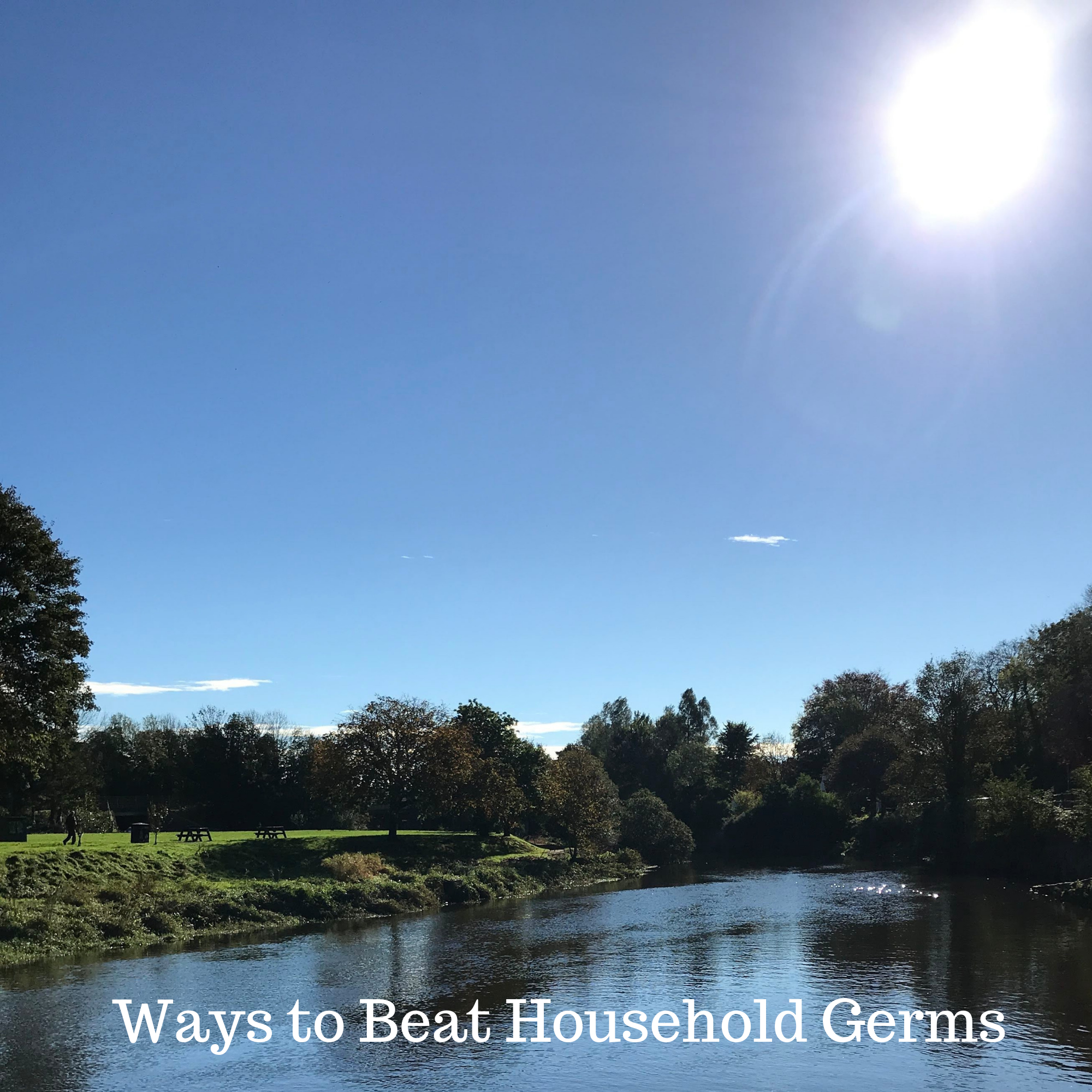 Ways to Beat Household Germs