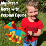 My Dream Horse with Petplan Equine