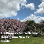 UK Viewers Get Welcome Relief From New TV Guide